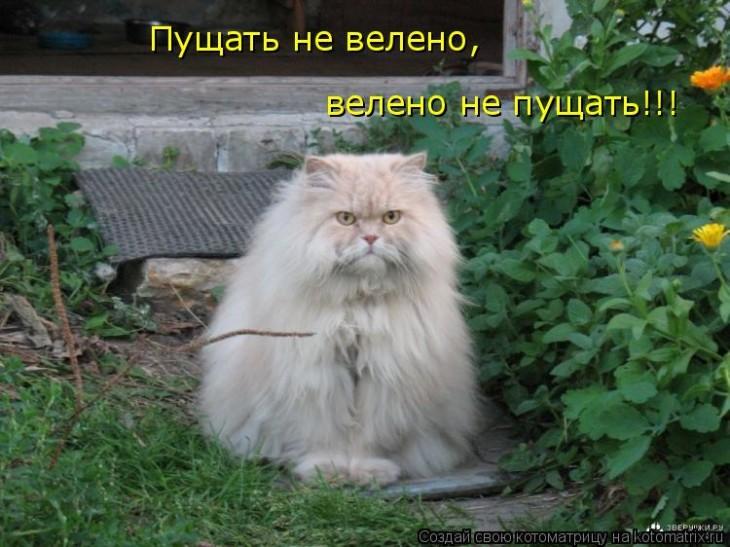Фото с сайта: ne-kurim.ru
